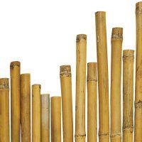 Opora bambus 240 cm fi 22-24 mm