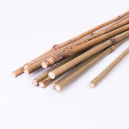 Opora bambus 60 cm fi 6 mm