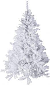 Smreka bela 210 cm, Koo.